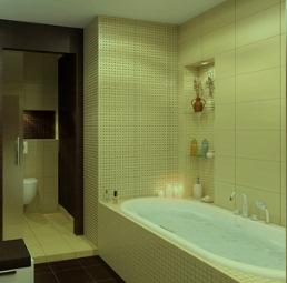 оСвмещение ванны и санузла